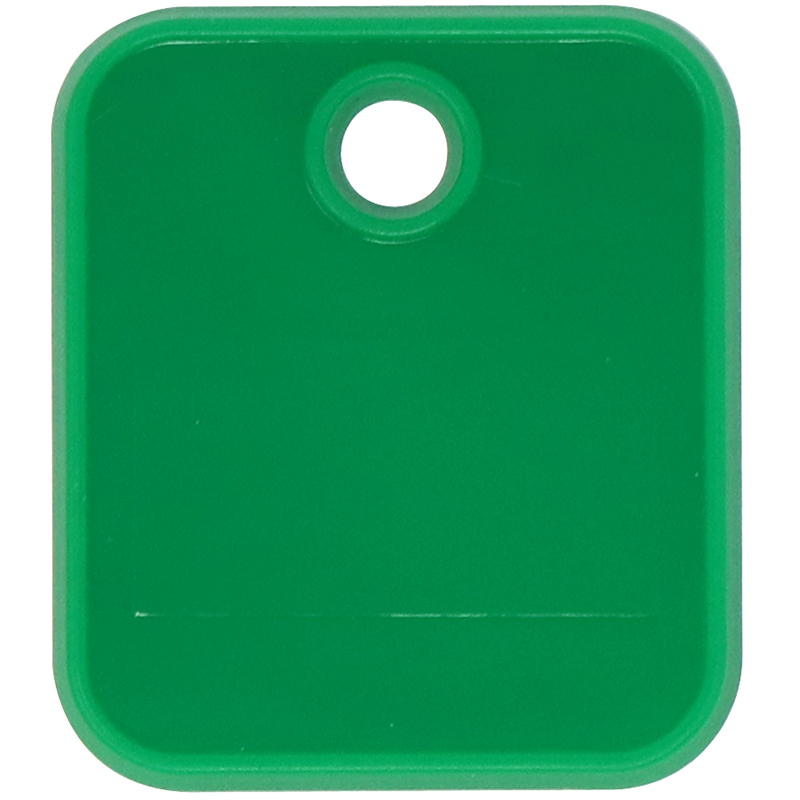 Plastic green square token with keychain hole